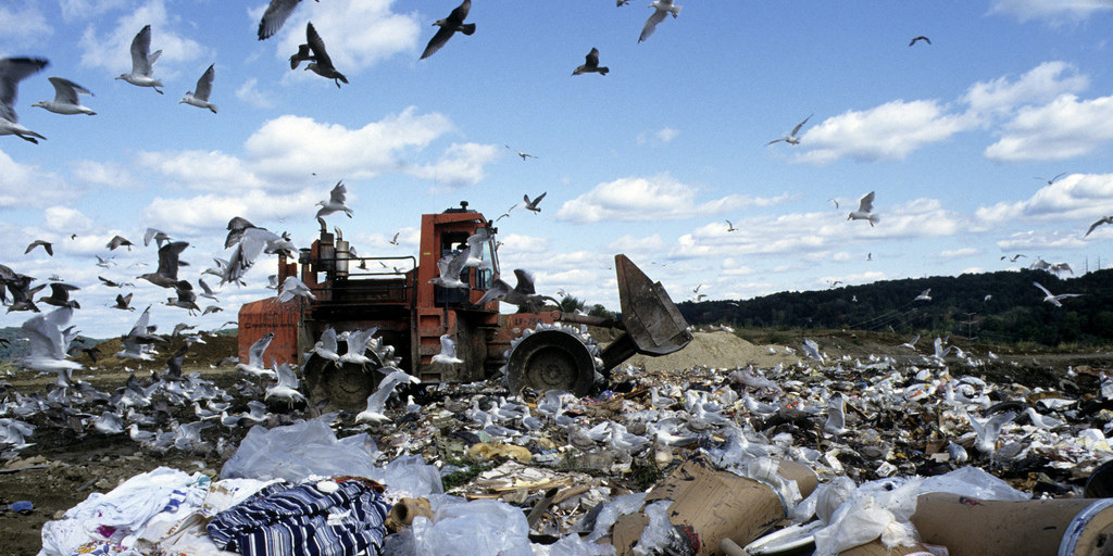 landfill incomplete decompostion and settling Like the early landfill, modern landfills are still subject to incomplete decomposition and settling most of the other issues are being managed modern landfills are harvesting the methane gas and using it as a renewable energy source.