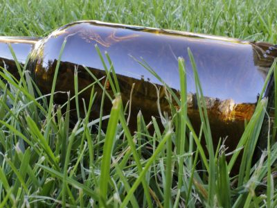 empty beer bottle lying in the gras